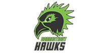 Connecticut Hawks Logo