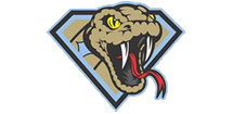 Lake County Sidewinders Travel Baseball Logo