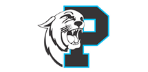 Lancaster Panthers Football Logo